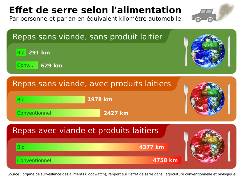 impact alimentation environnement