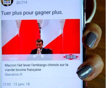 Fin de l'embargo en Chine sur le boeuf français