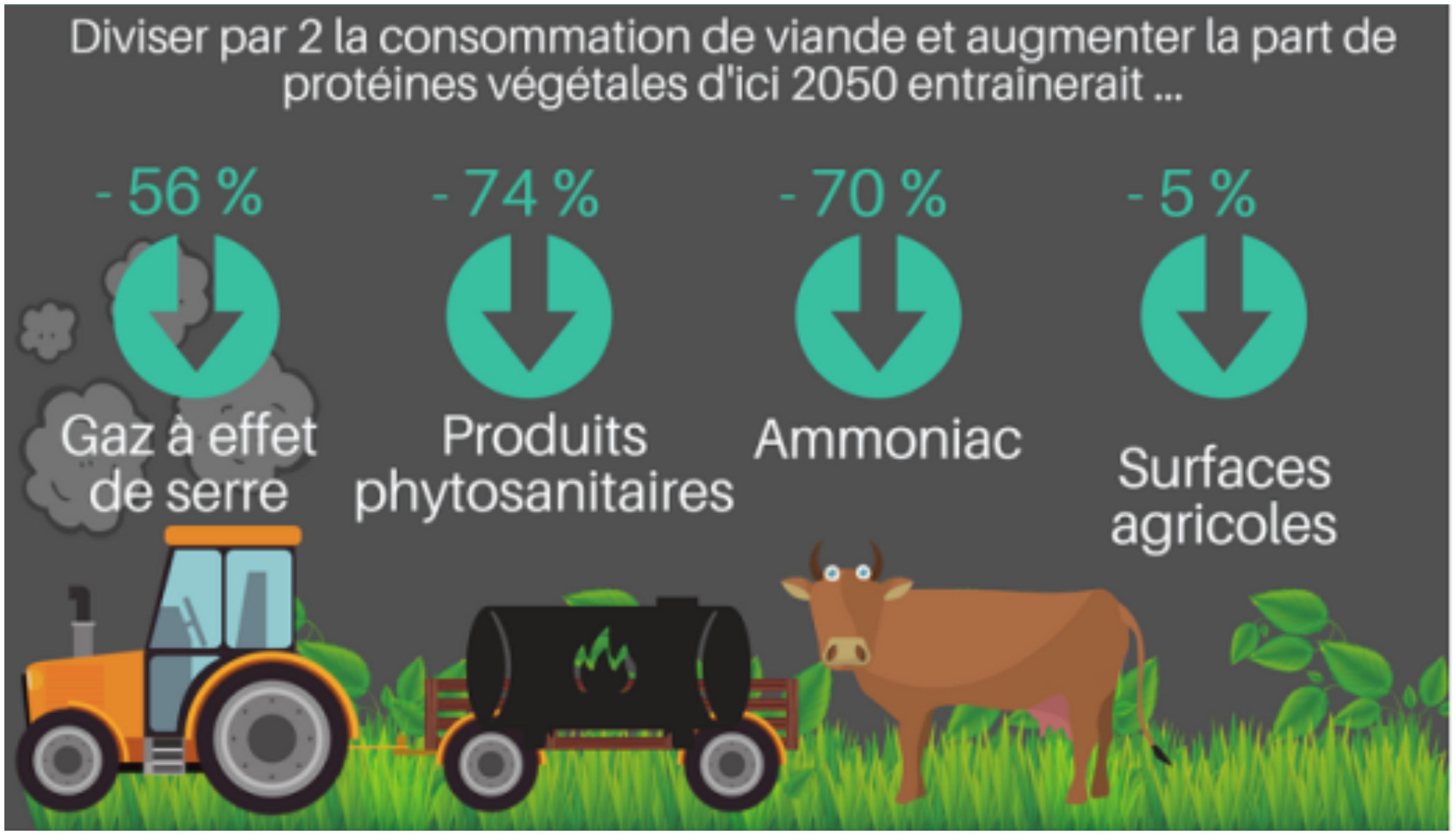 impact-viande-pollution