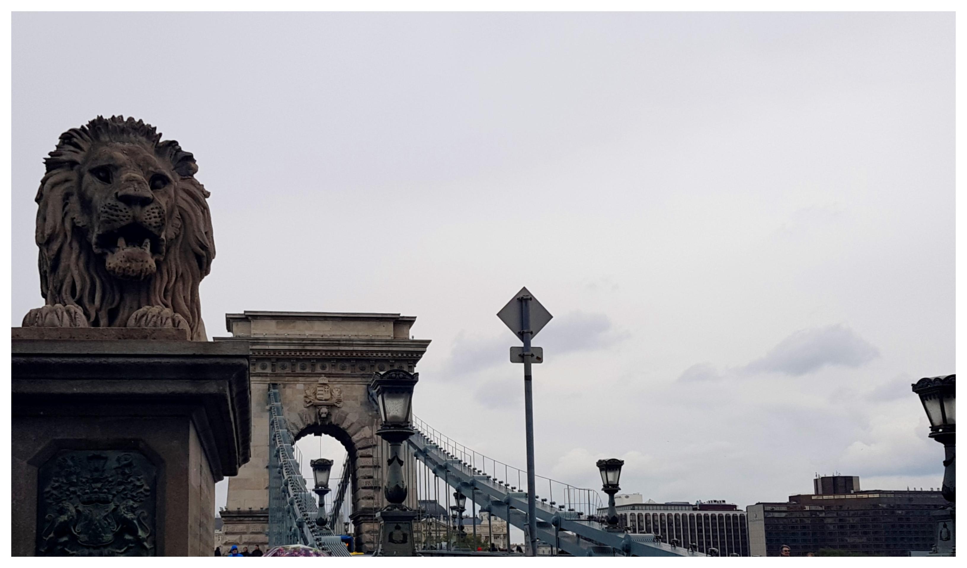 budapest-chains-bridge