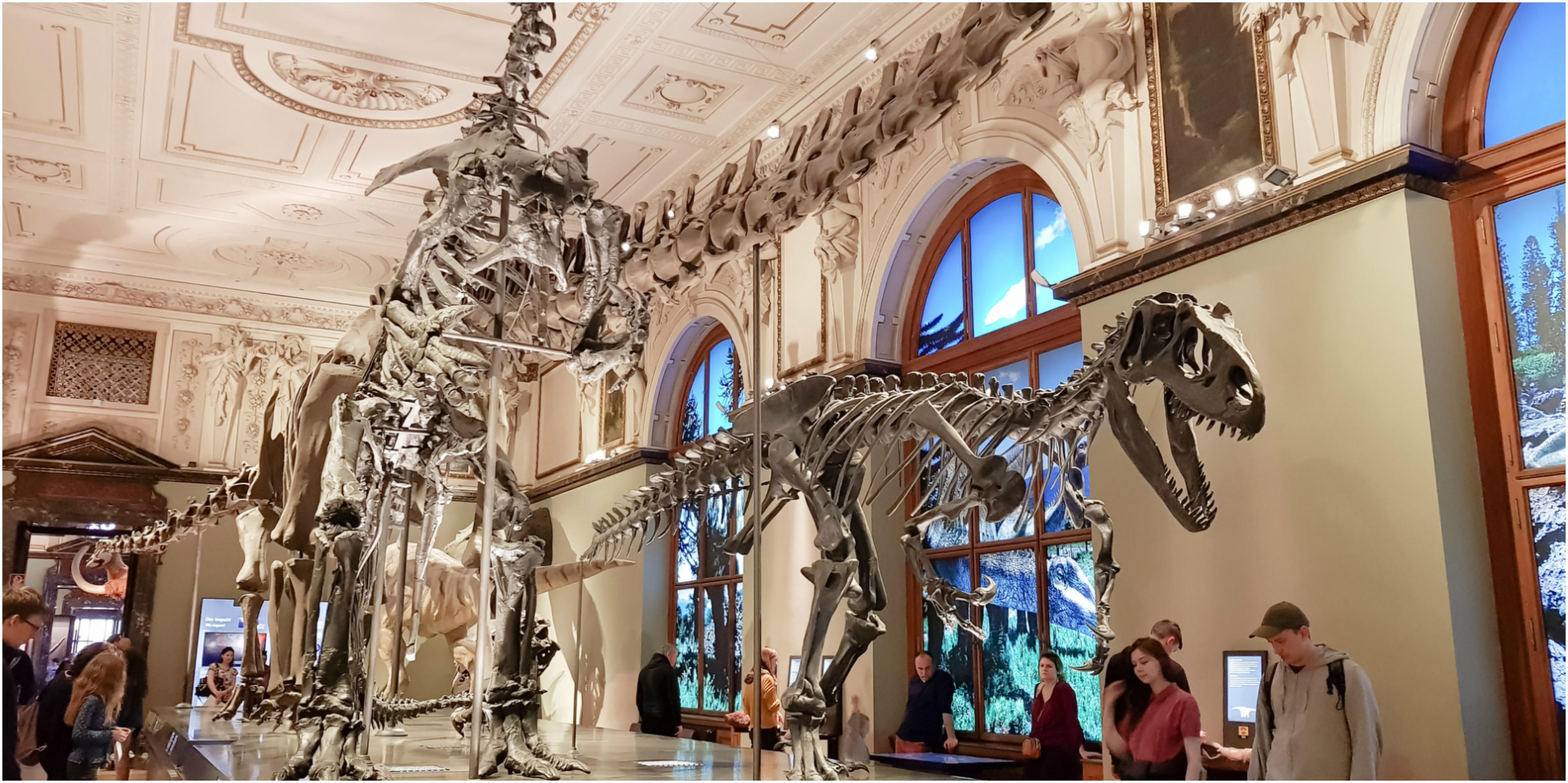 Naturhistorisches-Museum-3-jours-visiter-découvrir-Vienne