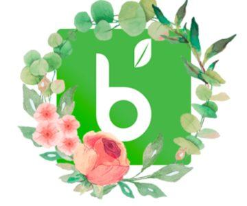Balayage Minéral Rodolphe & co chez Biocoiff